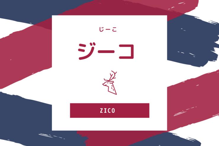 「ジーコ」の画像